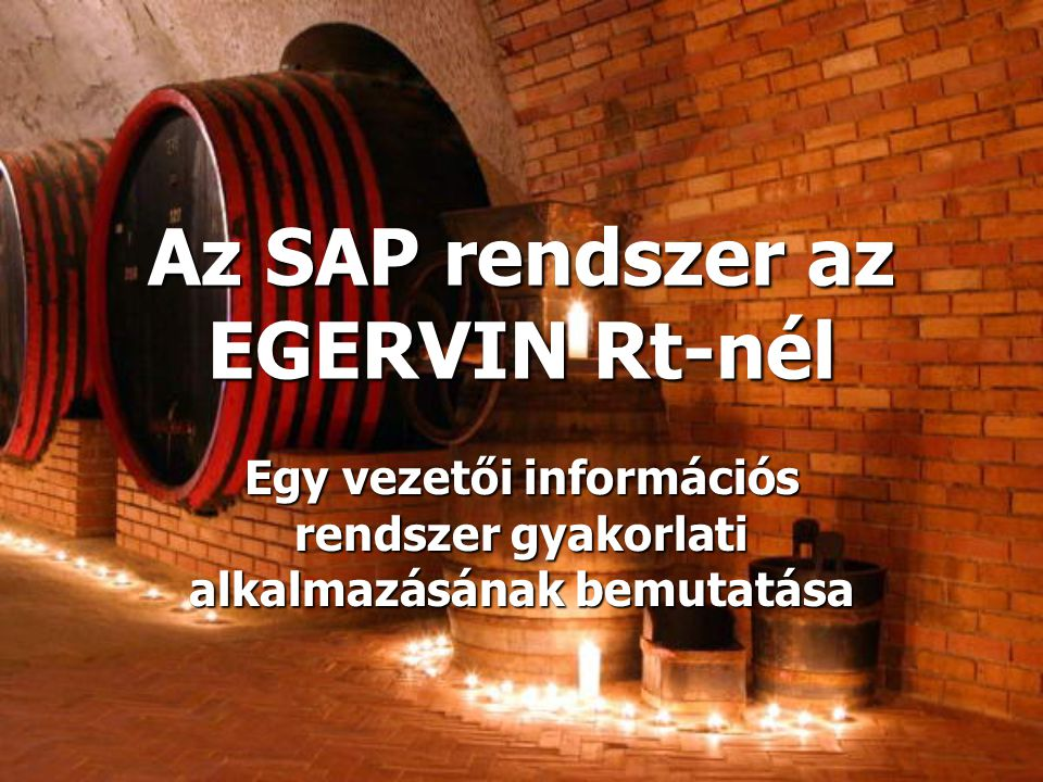 Az SAP rendszer az EGERVIN Rt-nél