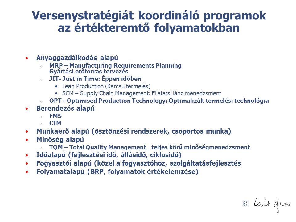 Versenystratégiát koordináló programok az értékteremtő folyamatokban