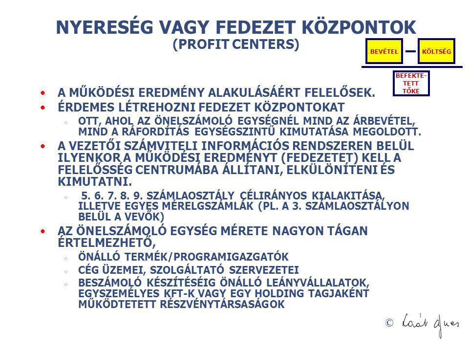 NYERESÉG VAGY FEDEZET KÖZPONTOK (PROFIT CENTERS)