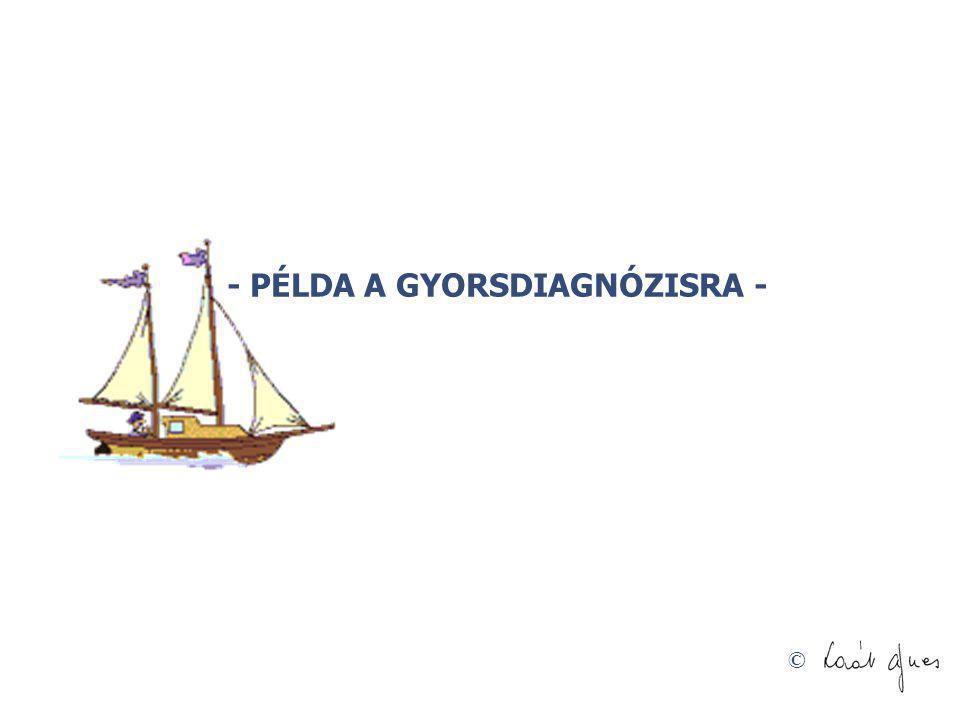 - PÉLDA A GYORSDIAGNÓZISRA -