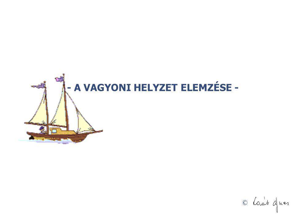 - A VAGYONI HELYZET ELEMZÉSE -