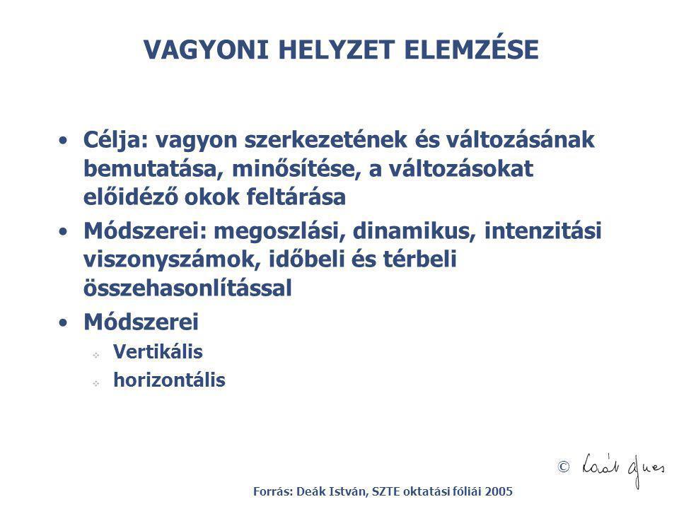 VAGYONI HELYZET ELEMZÉSE