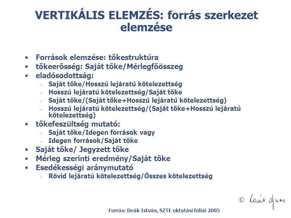 VERTIKÁLIS ELEMZÉS: forrás szerkezet elemzése