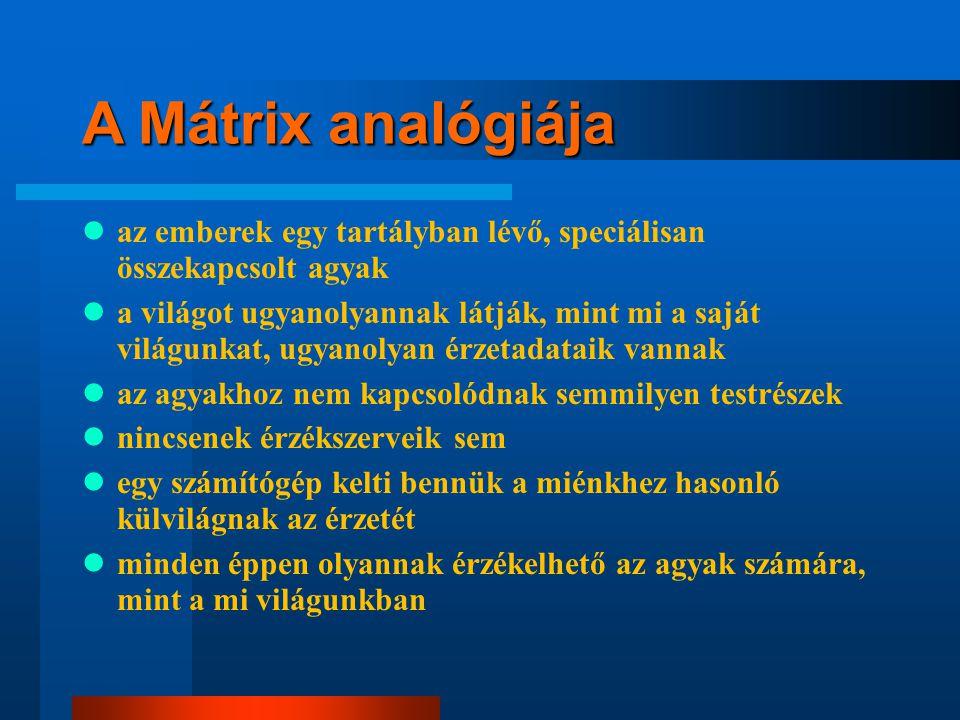 A Mátrix analógiája az emberek egy tartályban lévő, speciálisan összekapcsolt agyak.