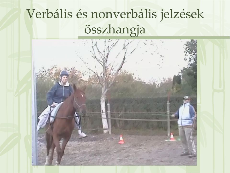 Verbális és nonverbális jelzések összhangja