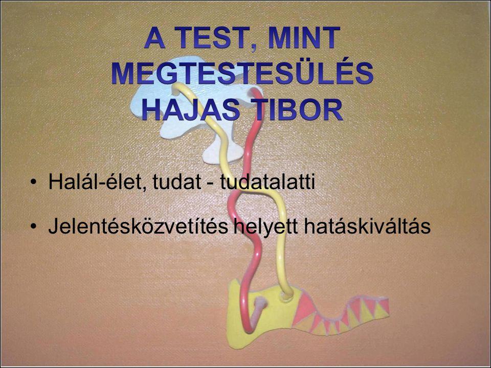 A TEST, MINT MEGTESTESÜLÉS HAJAS TIBOR