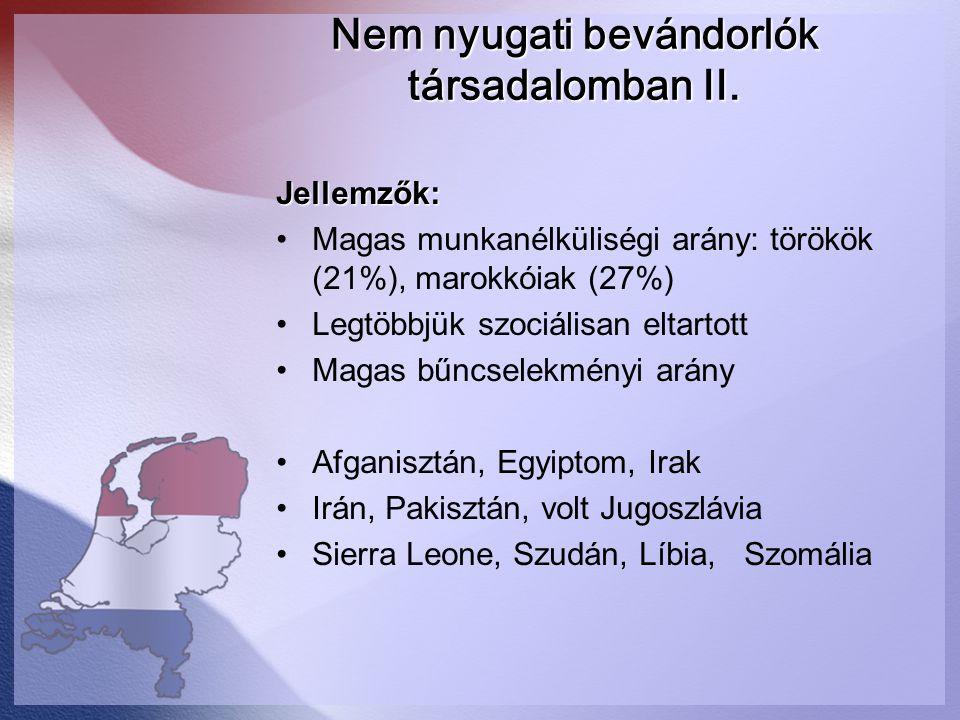 Nem nyugati bevándorlók társadalomban II.