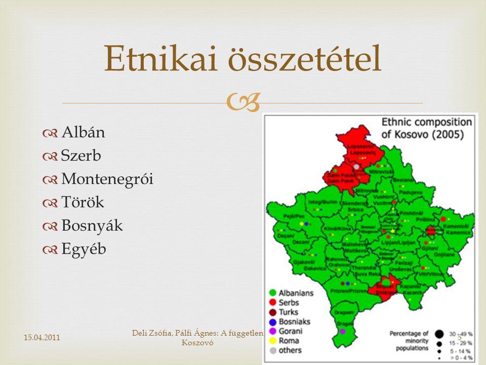 Deli Zsófia, Pálfi Ágnes: A független Koszovó
