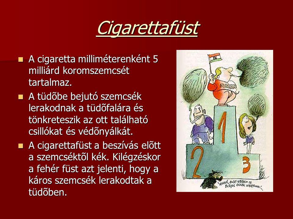 Cigarettafüst A cigaretta milliméterenként 5 milliárd koromszemcsét tartalmaz.