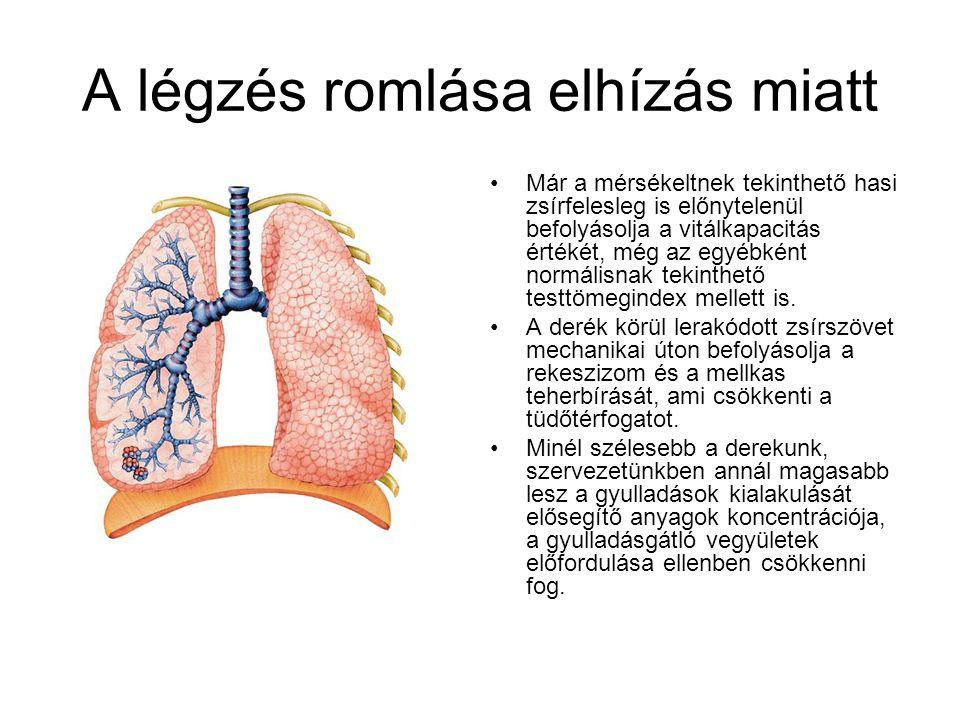 A légzés romlása elhízás miatt