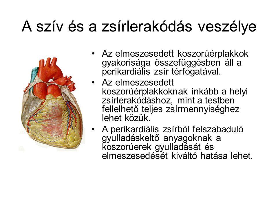 A szív és a zsírlerakódás veszélye