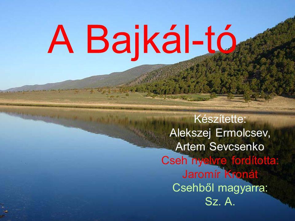 Cseh nyelvre fordította: