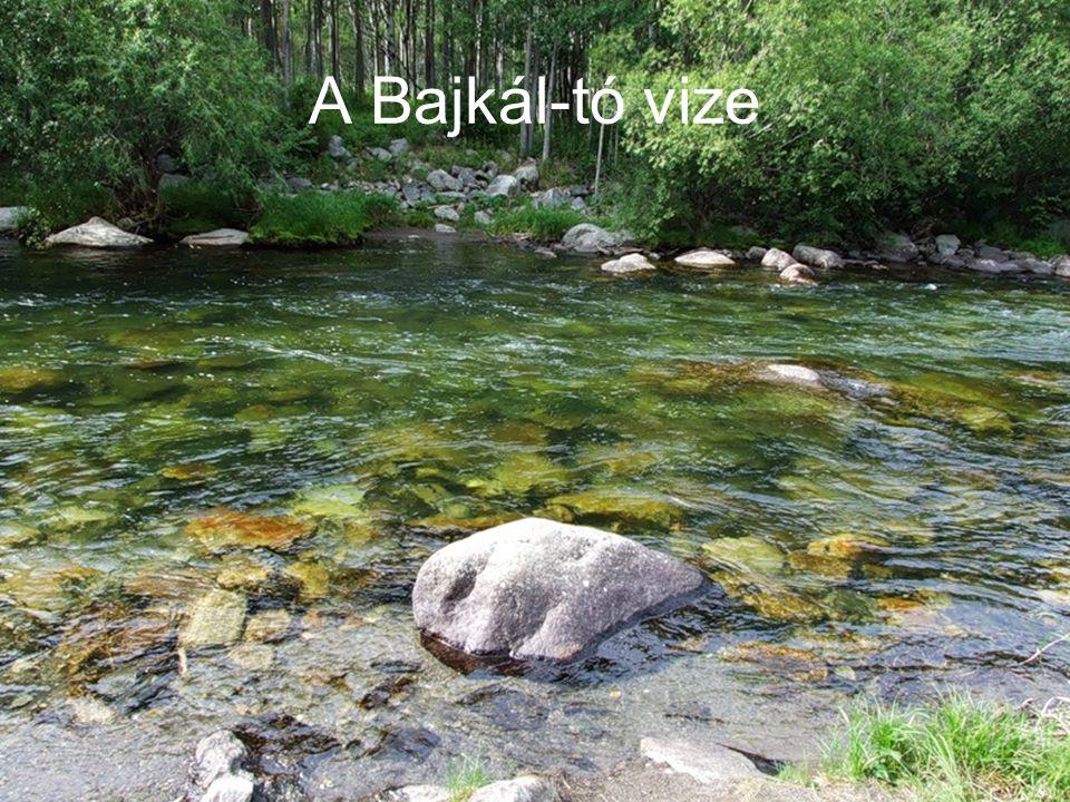 A Bajkál-tó vize