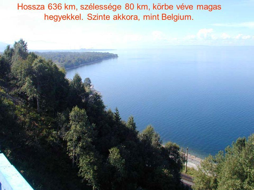 Hossza 636 km, szélessége 80 km, körbe véve magas hegyekkel