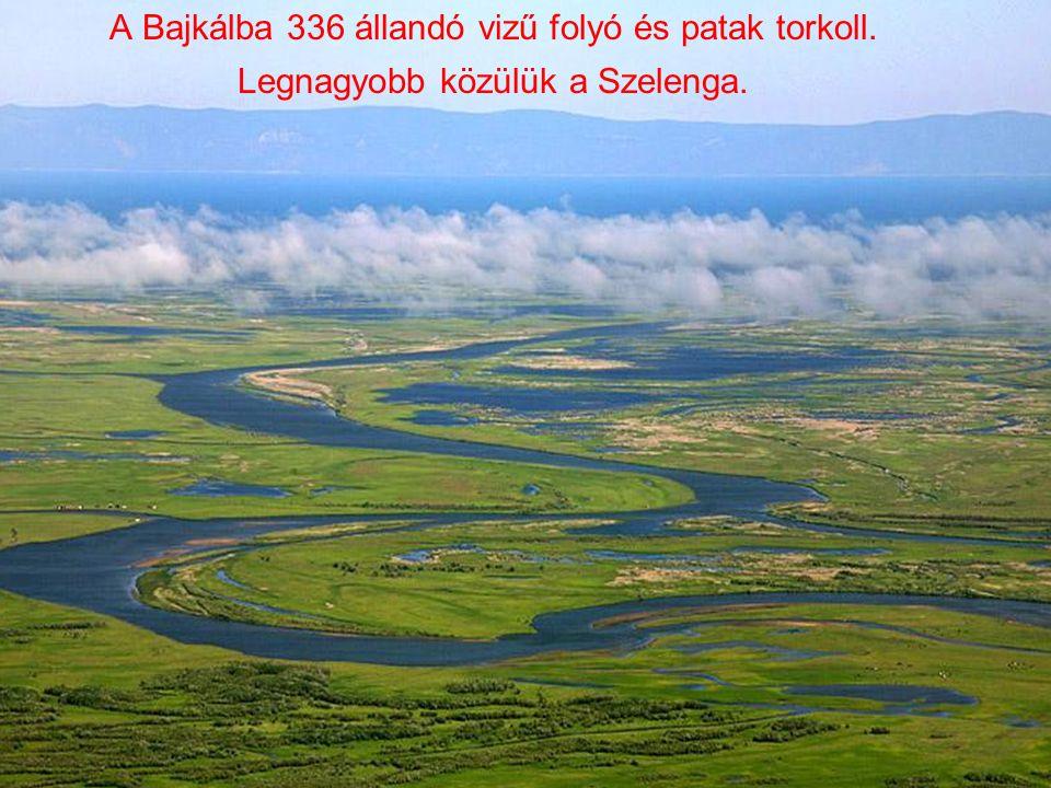 A Bajkálba 336 állandó vizű folyó és patak torkoll