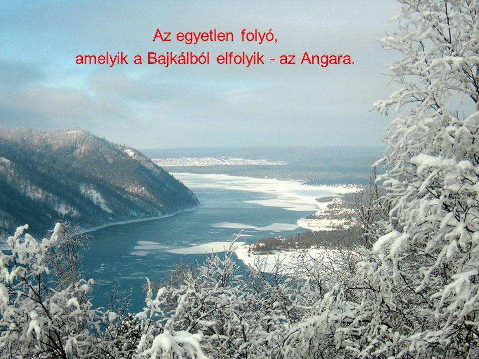amelyik a Bajkálból elfolyik - az Angara.