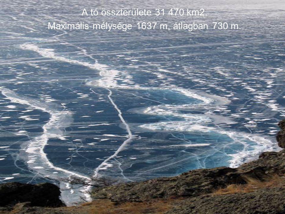 Maximális mélysége 1637 m, átlagban 730 m.