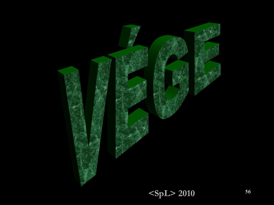 VÉGE <SpL> 2010