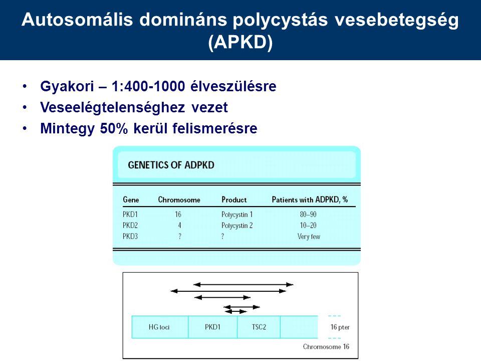 Autosomális domináns polycystás vesebetegség (APKD)