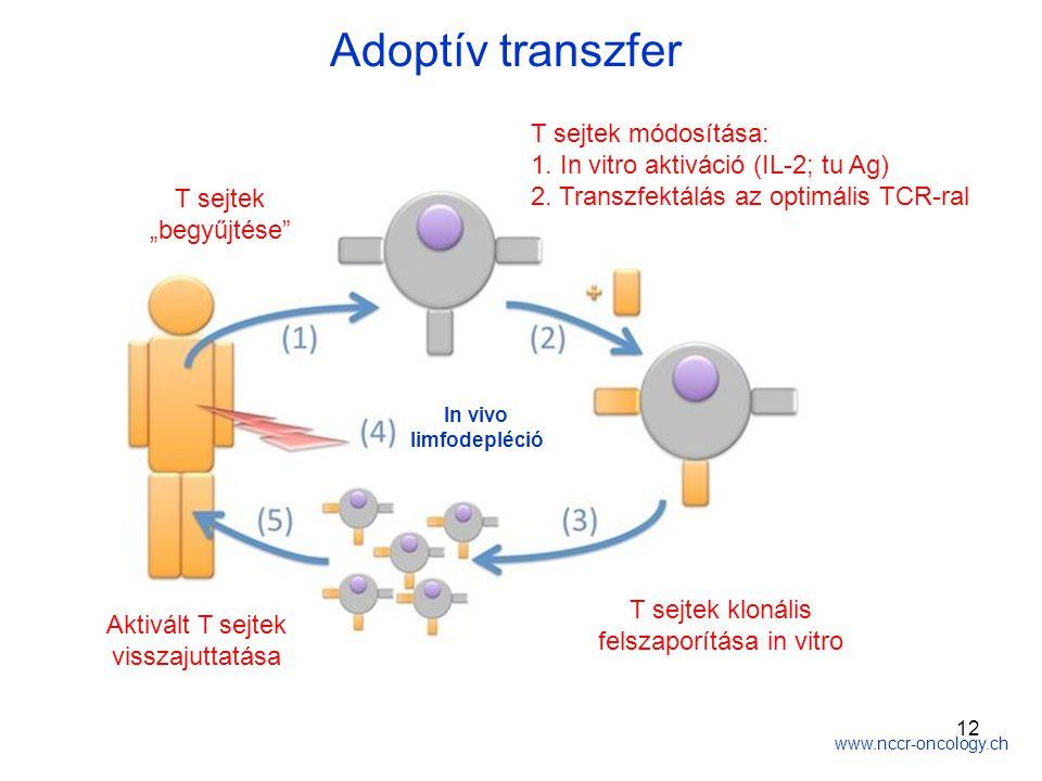T sejtek klonális felszaporítása in vitro