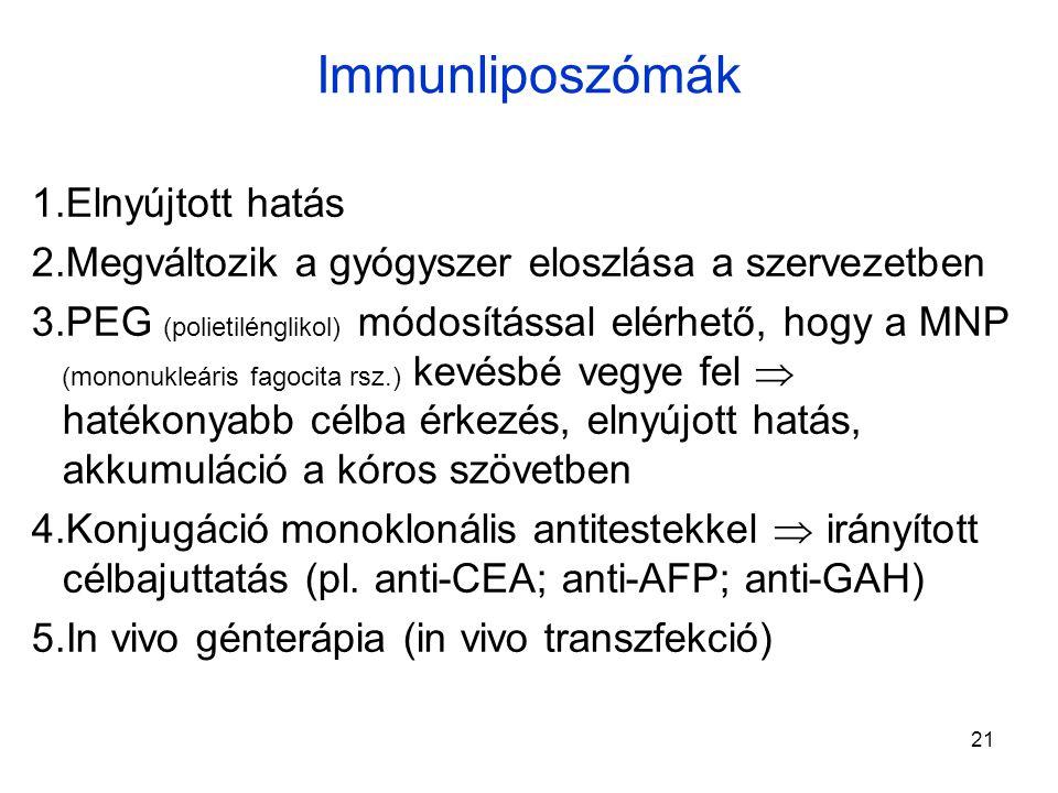 Immunliposzómák Elnyújtott hatás