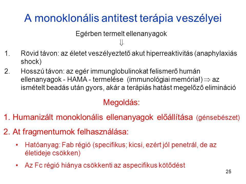 A monoklonális antitest terápia veszélyei