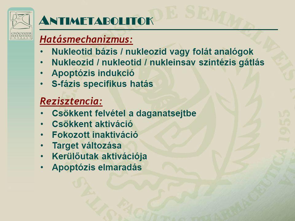 ANTIMETABOLITOK Hatásmechanizmus: Rezisztencia:
