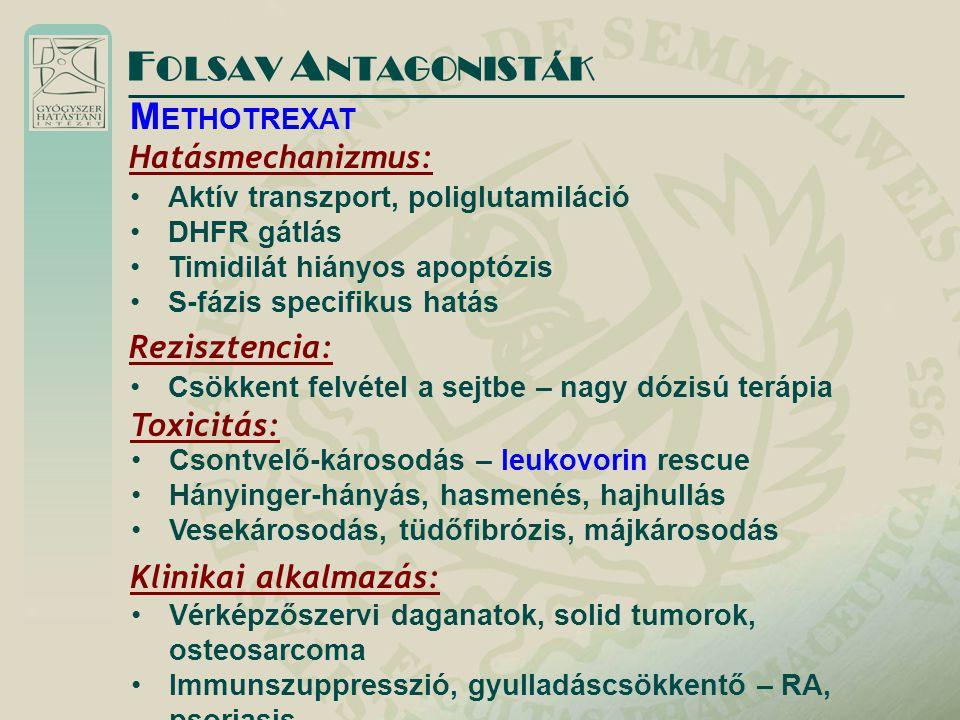 FOLSAV ANTAGONISTÁK METHOTREXAT Hatásmechanizmus: Rezisztencia:
