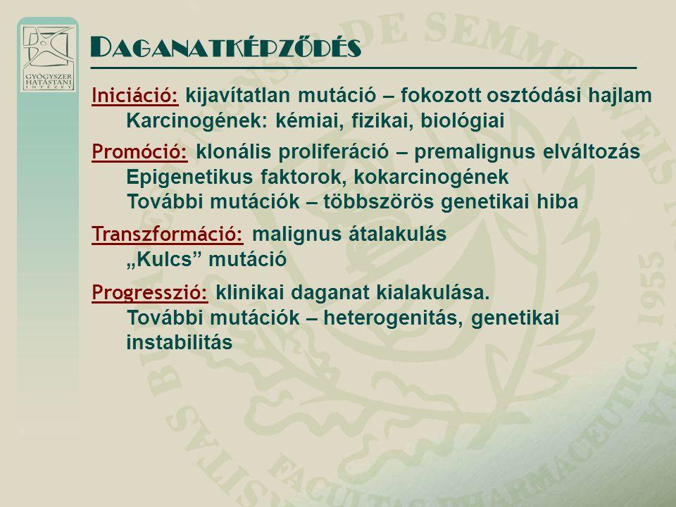 DAGANATKÉPZŐDÉS Iniciáció: kijavítatlan mutáció – fokozott osztódási hajlam. Karcinogének: kémiai, fizikai, biológiai.