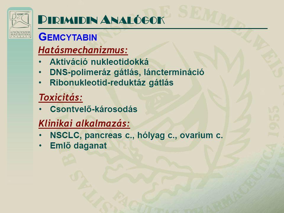PIRIMIDIN ANALÓGOK GEMCYTABIN Hatásmechanizmus: Toxicitás: