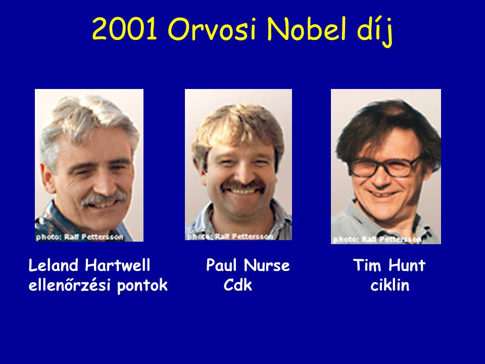 2001 Orvosi Nobel díj Leland Hartwell Paul Nurse Tim Hunt