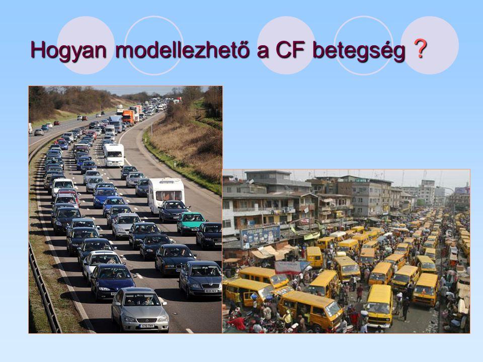 Hogyan modellezhető a CF betegség