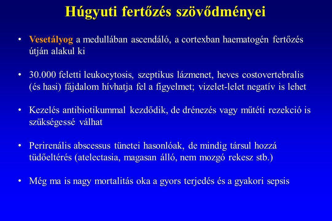 Húgyuti fertőzés szövődményei