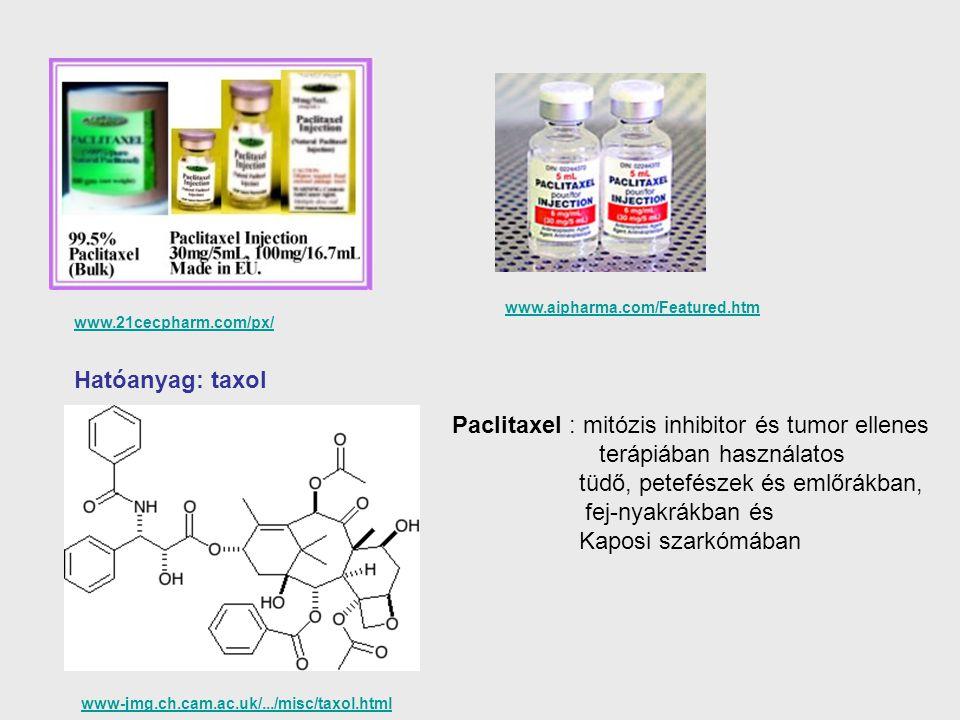 Paclitaxel : mitózis inhibitor és tumor ellenes terápiában használatos