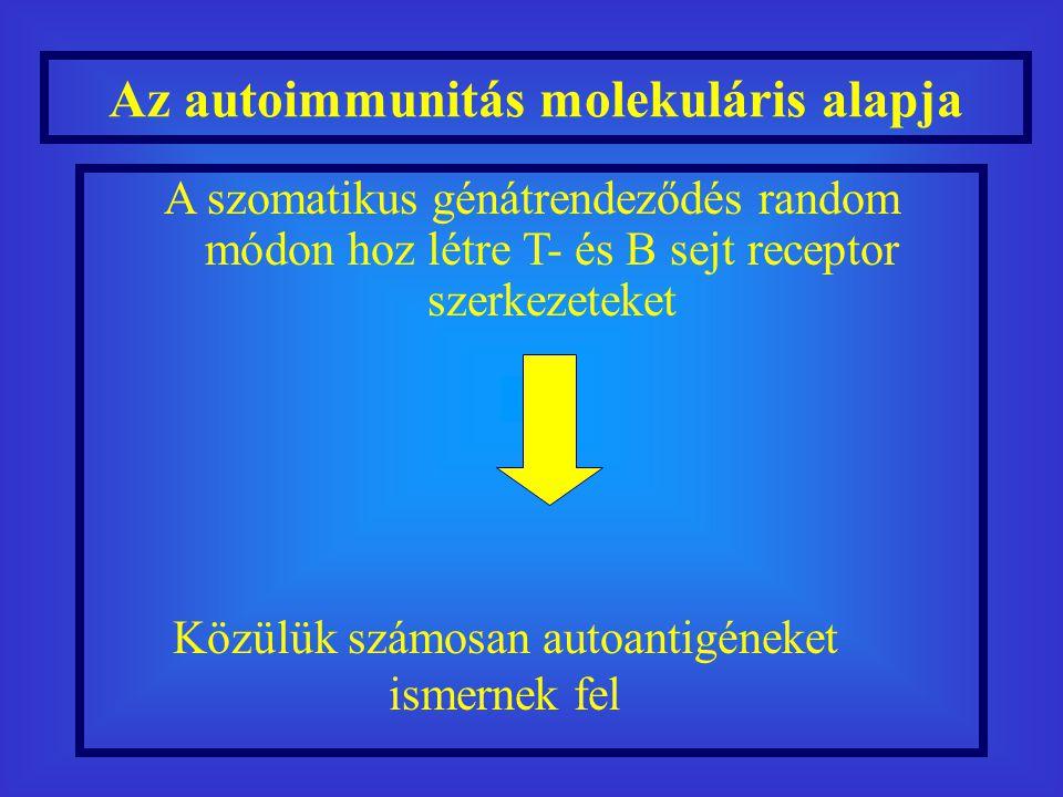 Az autoimmunitás molekuláris alapja