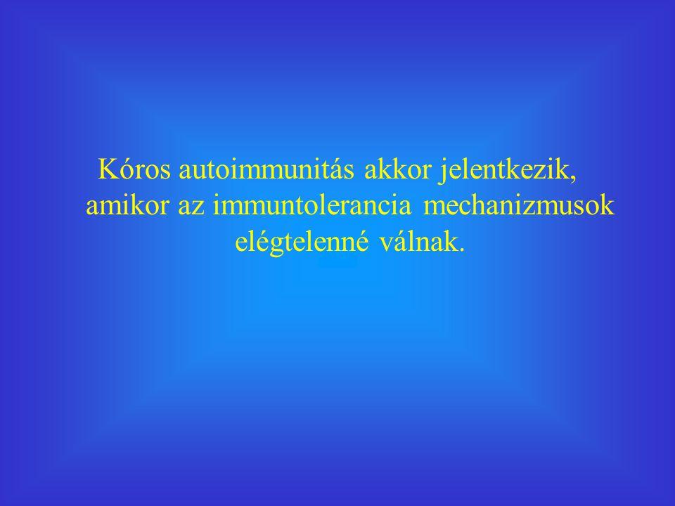 Kóros autoimmunitás akkor jelentkezik, amikor az immuntolerancia mechanizmusok elégtelenné válnak.