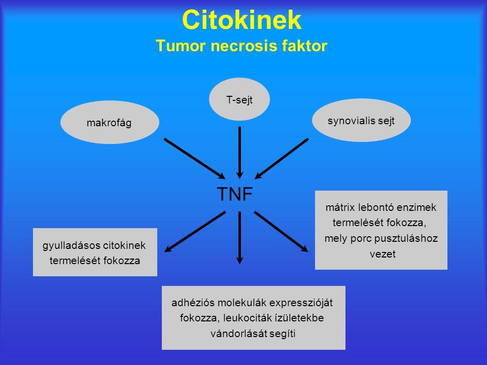 Citokinek Tumor necrosis faktor