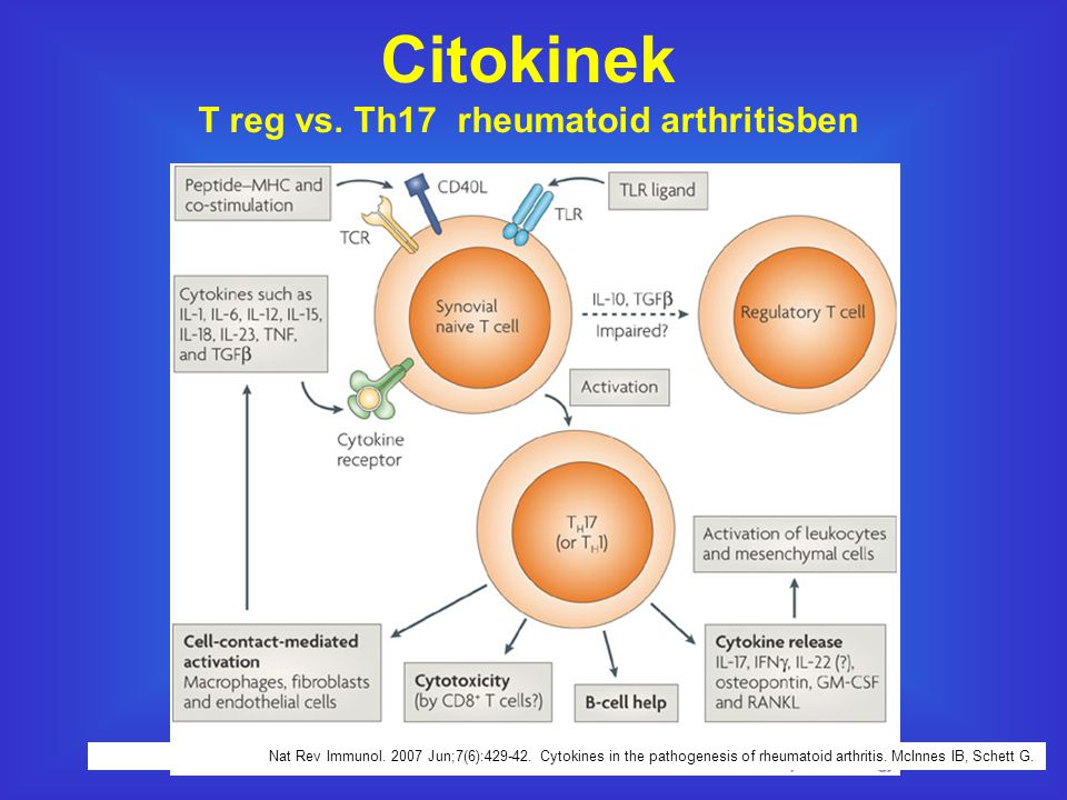 T reg vs. Th17 rheumatoid arthritisben