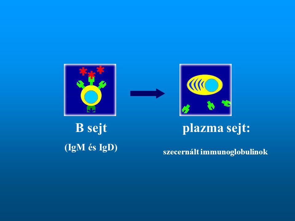 szecernált immunoglobulinok