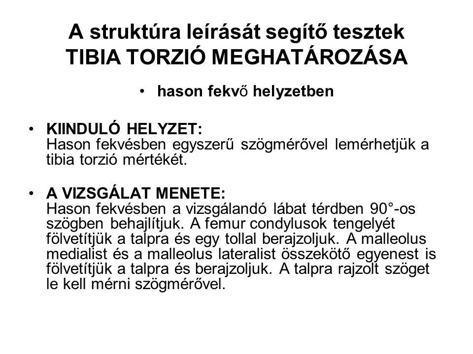 A struktúra leírását segítő tesztek TIBIA TORZIÓ MEGHATÁROZÁSA