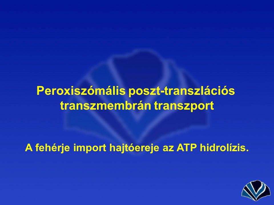 Peroxiszómális poszt-transzlációs transzmembrán transzport
