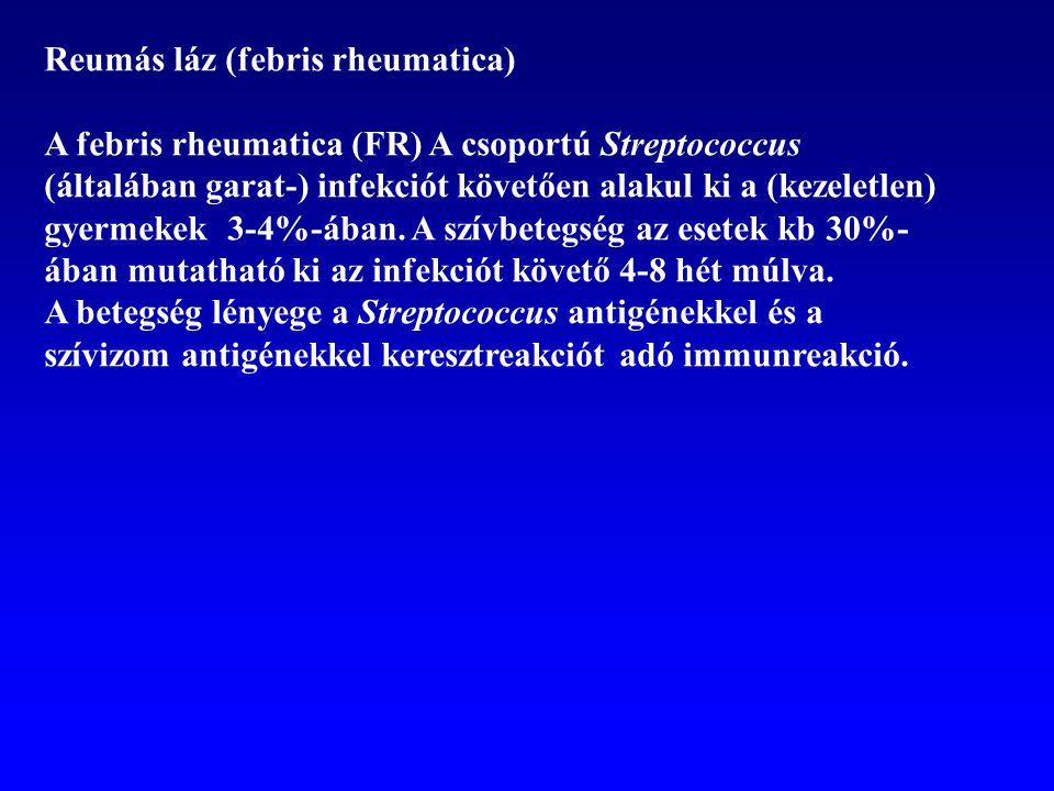 Reumás láz (febris rheumatica)