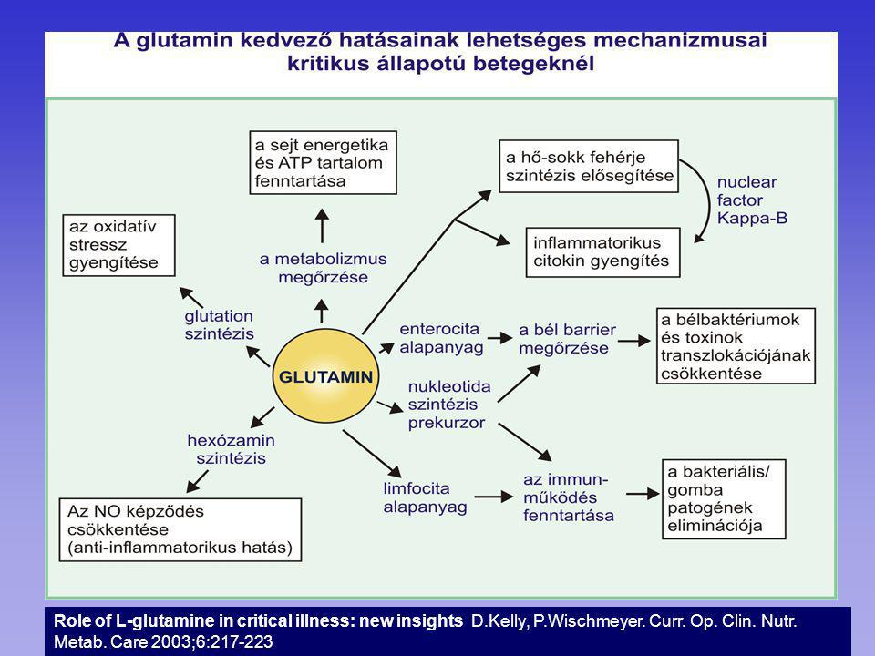 Role of L-glutamine in critical illness: new insights D. Kelly, P