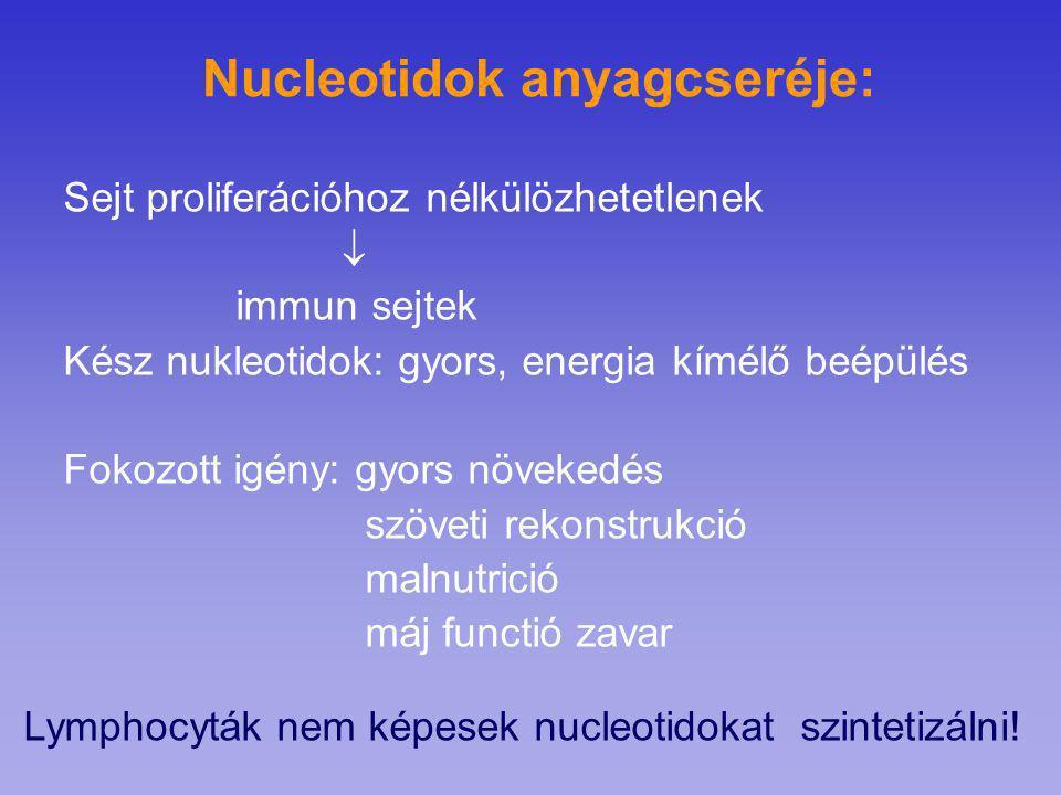 Nucleotidok anyagcseréje: