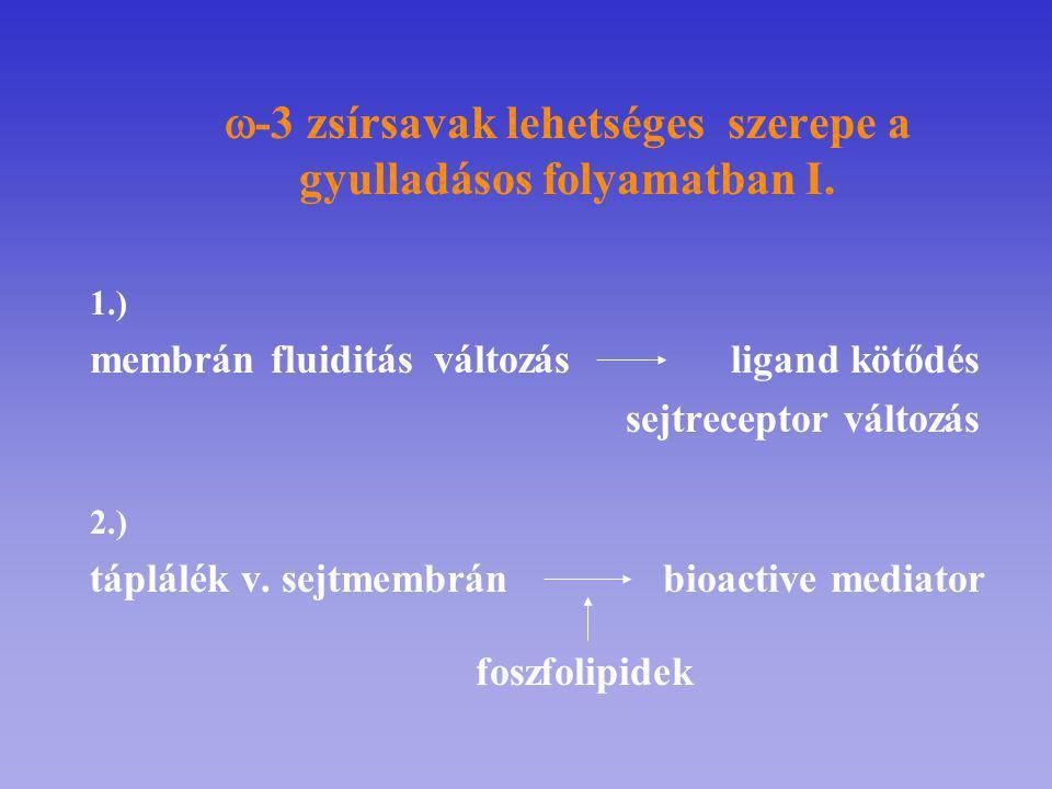 -3 zsírsavak lehetséges szerepe a gyulladásos folyamatban I.