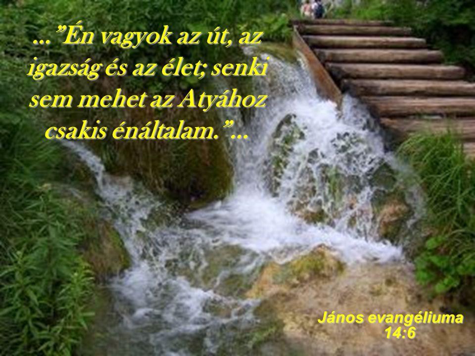 … Én vagyok az út, az igazság és az élet; senki sem mehet az Atyához csakis énáltalam. …