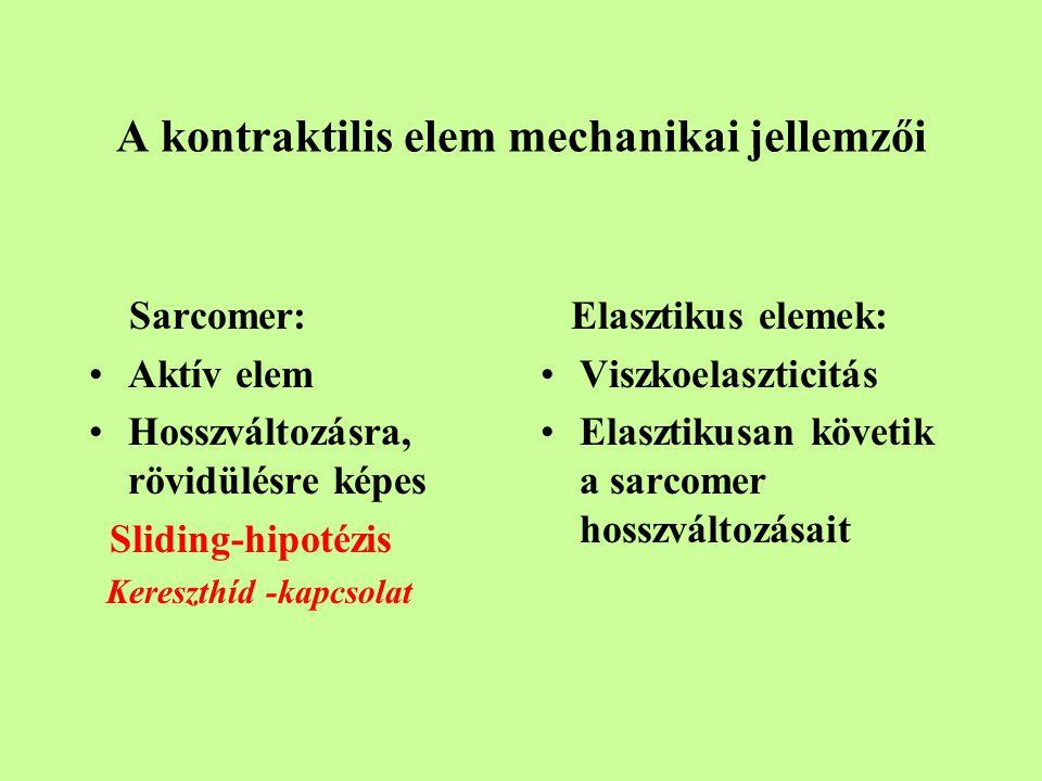 A kontraktilis elem mechanikai jellemzői