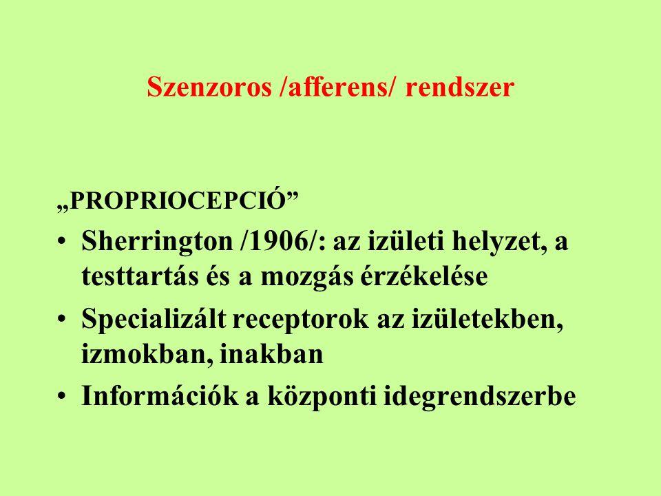 Szenzoros /afferens/ rendszer