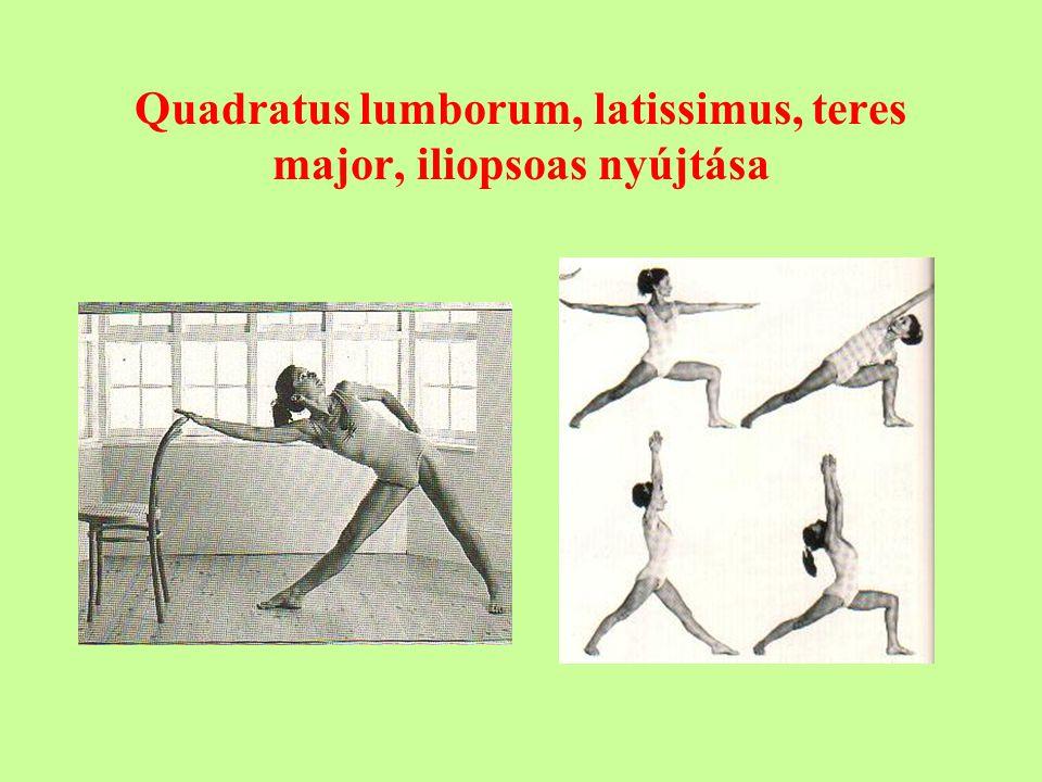 Quadratus lumborum, latissimus, teres major, iliopsoas nyújtása