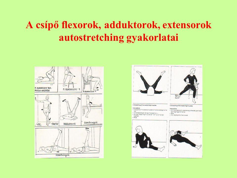 A csípő flexorok, adduktorok, extensorok autostretching gyakorlatai